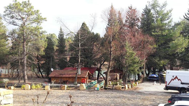 Ocak Ayı Köprülü Kanyon Yoga Kış Kampı